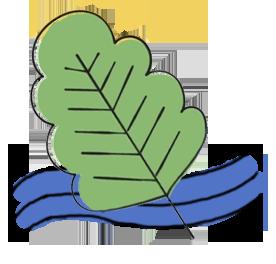 Grön vattenkraft